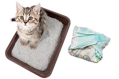 Déchets litière de chat, couches-culottes
