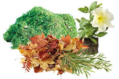 Déchets végétaux, de jardin à jeter dans la poubelle verte.